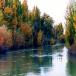 rio-chubut-zona-rural-gaiman1